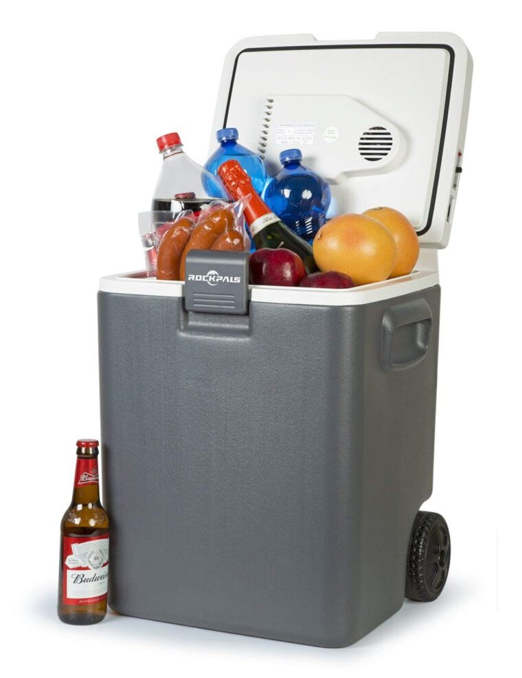The 10 Best 12V Refrigerators in 2020 35