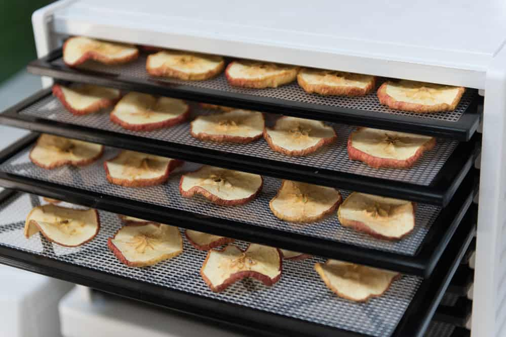 apple-in-drying-machine.jpg