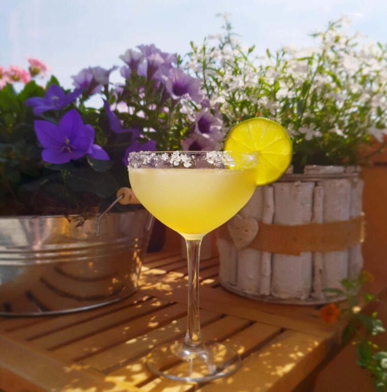 What Are The Best Margarita Mixes For Your Machine 1